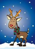 Funny reindeer stock photos