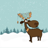 Funny Reindeer for Christmas celebration. Stock Photography