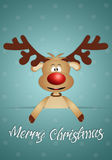 Funny reindeer for Christmas Stock Photography