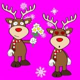 Funny reindeer xmas cartoon emotions set11 Royalty Free Stock Photo