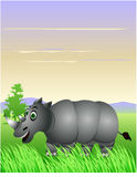 Funny rhino cartoon Royalty Free Stock Photo