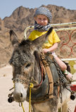 Funny riding. Little girl in bedouin kerchief riding on a grey donkey royalty free stock photography