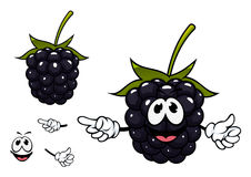 Funny ripe blackberry fruit character Stock Images