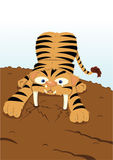 Funny saber tooth tiger Stock Photo