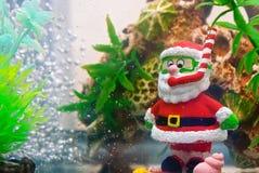 Funny Santa Claus – snorkeler in aquarium Stock Image