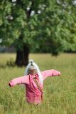 Funny scarecrow Royalty Free Stock Image