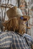 Funny scarecrow in the farm. A funny scarecrow in the farm Royalty Free Stock Photo