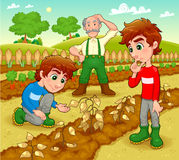 Funny scene in the vegetable garden. Royalty Free Stock Photography