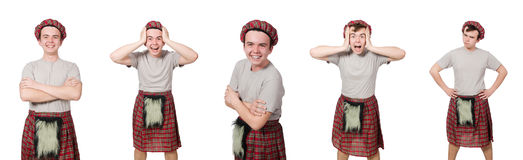 The funny scotsman isolated on white Stock Image