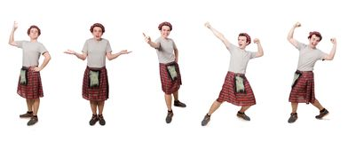 The funny scotsman isolated on white. Funny scotsman isolated on white Stock Photography