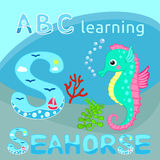 Funny sea animal alphabet S is for Seahorse Cute cartoon seahorse, red coral branch and seaweeds vector illustration Tropical sea. Vector illustration of Cute Stock Image