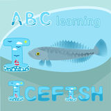 Funny sea animals alphabet I letter I is for Icefish Antarctic animal Icefish vector Grey and blue spotted fish cartoon character. Illustration of Antarctic Stock Images
