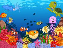 Funny sea animals cartoon set Stock Photos