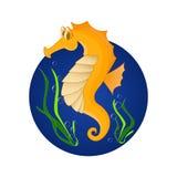 Funny sea horse. Cartoon character Stock Photography