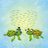 Funny sea turtles in love Stock Images