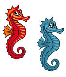 Funny seahorse Stock Images