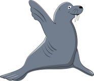 Funny Seal Say Hello Stock Photos