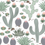 Funny seamless pattern with cactus.Exotic tropical background. Stock Images