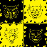 Funny seamless pattern with cat faces Stock Photography
