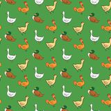 Funny seamless pattern with geese, ducks, cocks, Stock Photo