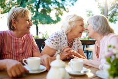 Funny seniors Royalty Free Stock Image