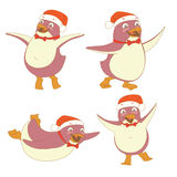 Funny set of penguin character wearing red Santa Claus hat (danc Royalty Free Stock Images