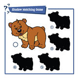 Funny shadow bear game. Stock Image