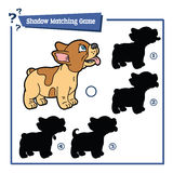 Funny shadow dog game. Stock Photo