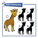 Funny shadow giraffe game. Vector illustration of shadow matching game with happy cartoon giraffe for children Stock Image