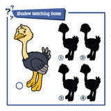 Funny shadow ostrich game. Vector illustration of shadow matching game with happy cartoon ostrich for children Royalty Free Stock Photo