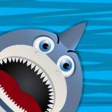 Funny shark avatar icon. For web Stock Photography