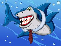 Funny shark cartoon Royalty Free Stock Image