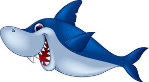 Funny shark cartoon Stock Photos