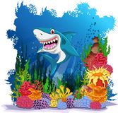 Funny shark with sea life background Stock Images