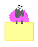 Funny sheep. Cartoonish pink sheep with billboard isolated on white Royalty Free Stock Photo