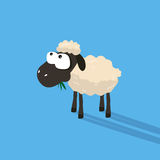 Funny sheep cartoon with silly face Royalty Free Stock Photography