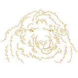 Funny sheep chewing. Vector line drawing. Graphic design stock illustration