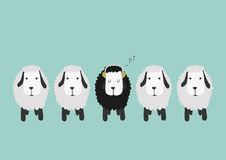 Funny sheep with color background Stock Photos