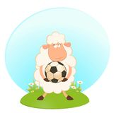 Funny sheep play in football Stock Photo