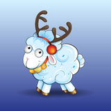 Funny sheep Stock Images