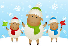 Funny sheep Stock Photo