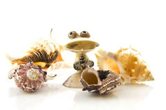 Funny shell creation Royalty Free Stock Photography
