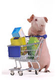 Funny Shopper Royalty Free Stock Images