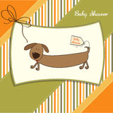 Funny shower card with dog Royalty Free Stock Photos