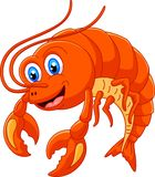 Funny shrimp cartoon character Stock Image