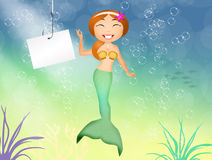 Funny siren Royalty Free Stock Photos
