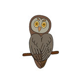 Funny sitting owl Royalty Free Stock Photo