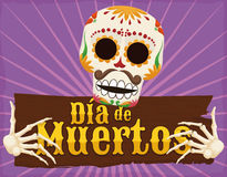"""Funny Skeleton Holding a Wooden Greeting for """"Dia de Muertos"""", Vector Illustration Royalty Free Stock Photography"""