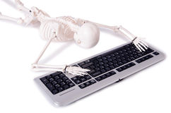 The funny skeleton working on computer Stock Photo