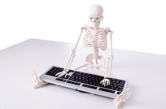 The funny skeleton working on computer Stock Photography
